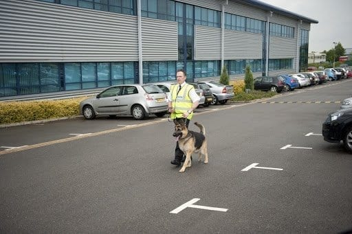 Dog Handlers: What the Law says and the benefits to your
